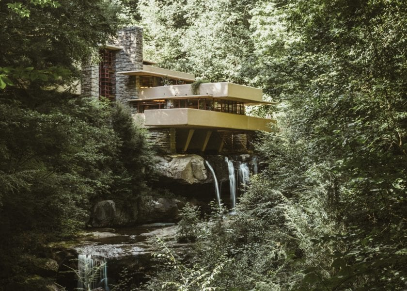 house surrounded by forest